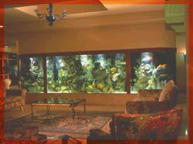 احواض اسماك الزينة ... وزوايا تنبض بالحياة في منزلك Aq3