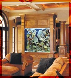 احواض اسماك الزينة ... وزوايا تنبض بالحياة في منزلك Aq5
